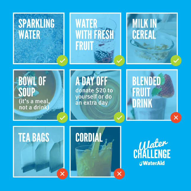 Rules of Water Challenge – OK: Sparkling Water, Water with fresh fruit, Milk in Cereal, Bowl of Soup, a day off – Not OK: Blended Fruit Drink, Tea bags, Cordial