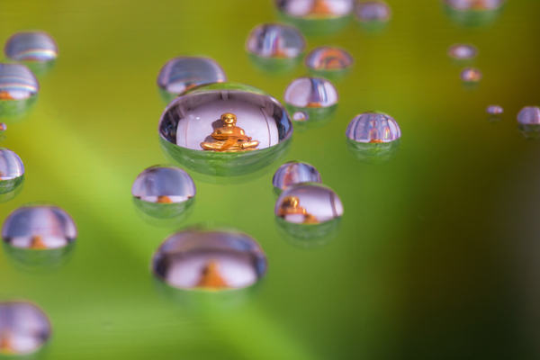 Buddha in in Water Droplet