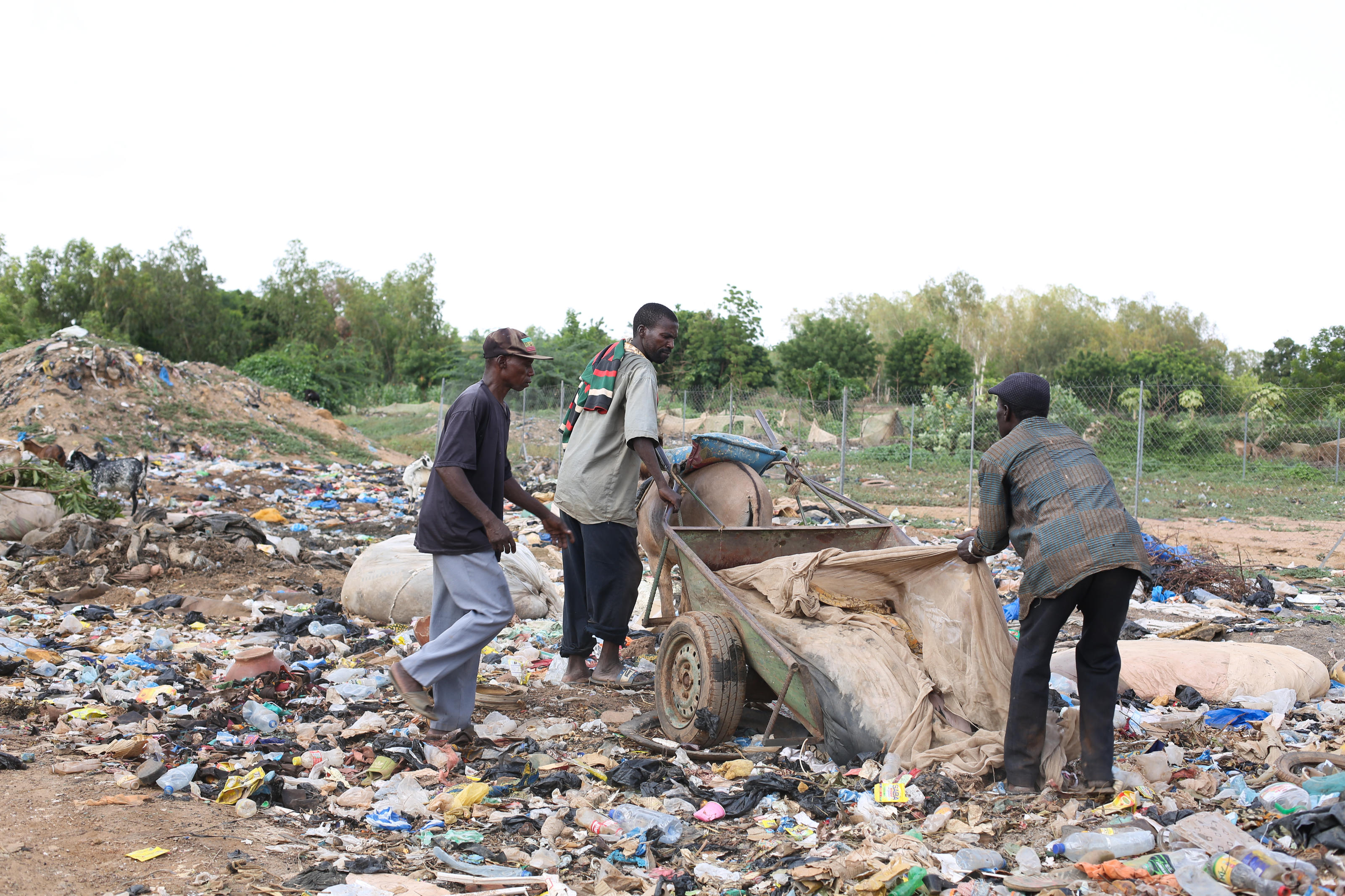 A team of sanitation workers empty their waste into a makeshift dumping ground