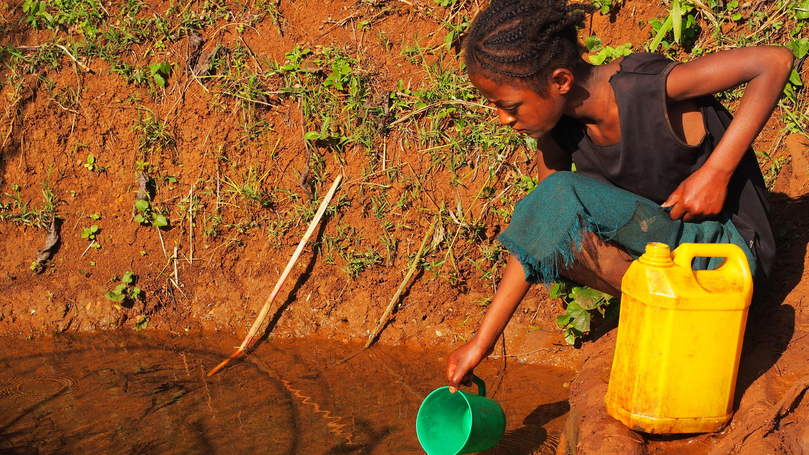 Young Ethiopian girl fetches water from a dirty pond
