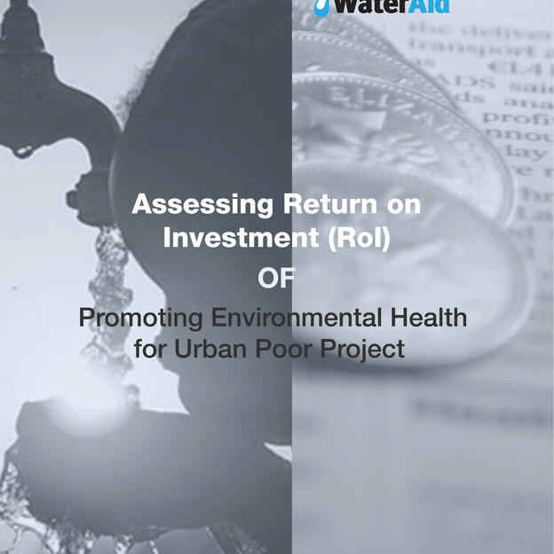 Assessing Return on Investment (RoI) Promoting Environmental Health