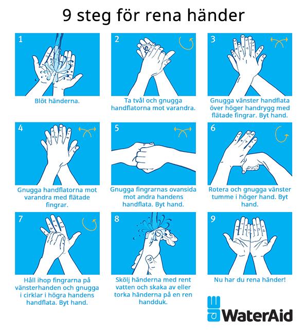 Illustration av handtvätt. Ring 08-6773070 för beskrivna instruktioner.