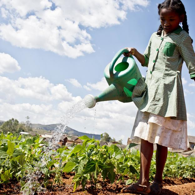 A young girl waters the school's garden at a Primary School that is supported by WaterAid. Madagascar, April 2016.