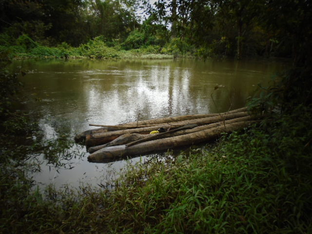 Tailu's photo of the Male river in his village of Tombohuaun, Sierra Leone