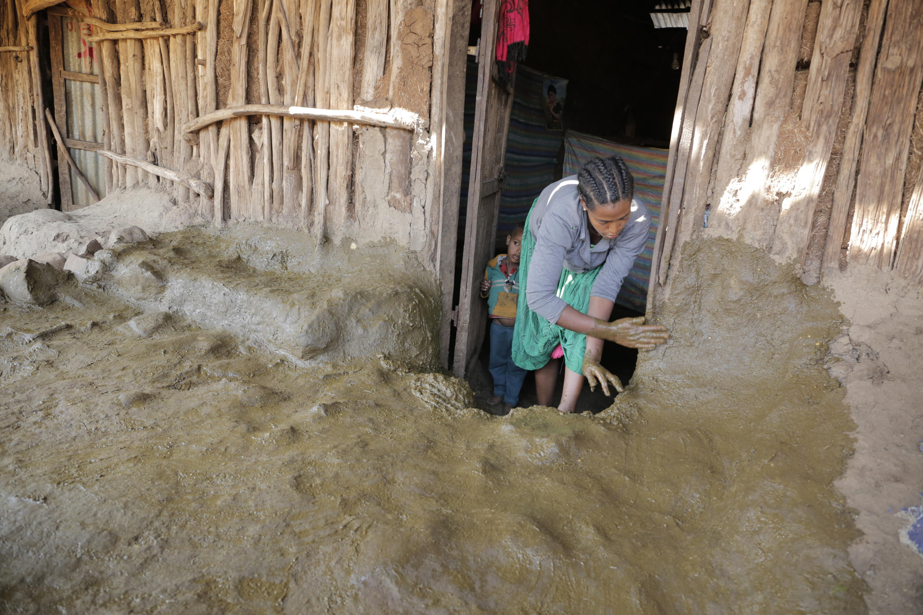 POLISHING THE FLOOR WITH COW DUNG: In Ethiopia, people use cow dung to polish the walls and floors of their houses as part of a house cleaning new year tradition to banish dust, illness and fleas and to bring good health for the coming year. Senede po ...