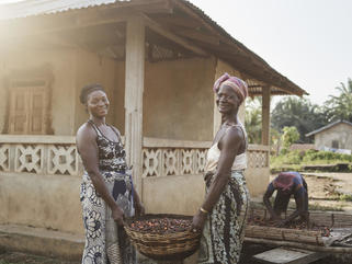 Haja and her aunt Mamie carrying palm kernels to be dried, in the village of Tombohuaun, Sierra Leone