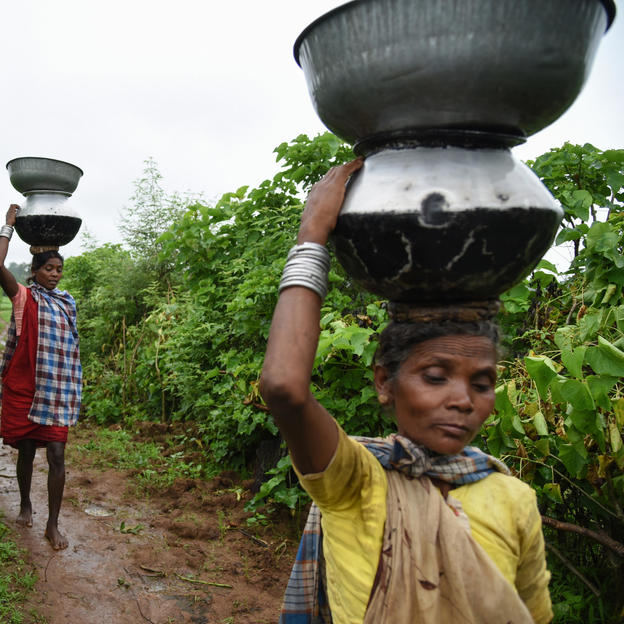 Kunwariya Bai, 40, carrying dirty water for her house from an open spring in Madhya Pradesh, India.