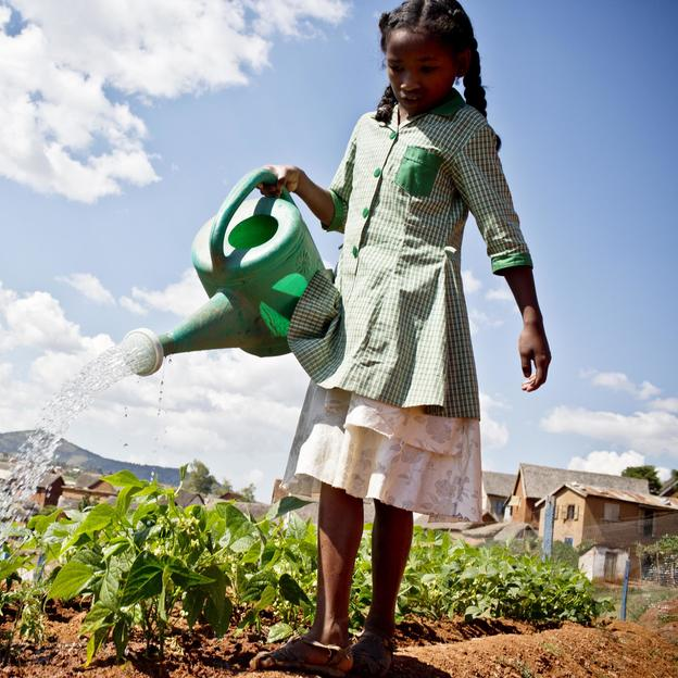 A young girl waters the school's garden at a primary School that is supported by WaterAid in Antanarivo, Madagascar April 2016.