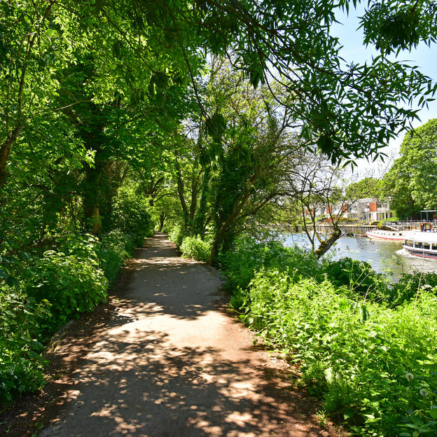 A shaded part of the Thames River path