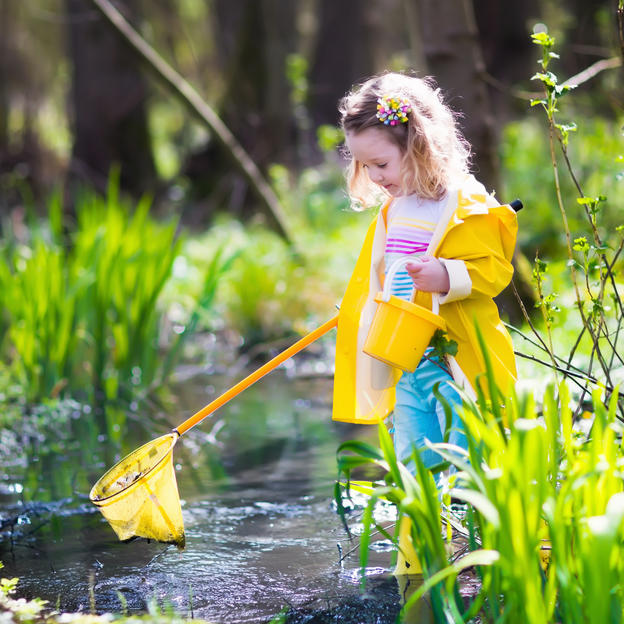 A young girl with a net looking for insects in a pond