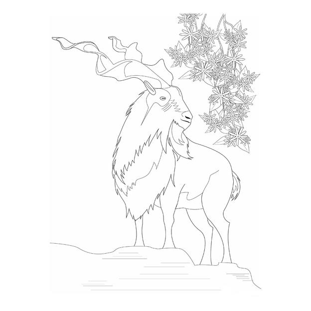 Illustration of a markhor