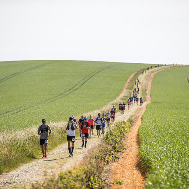 Race to the King Ultra Marathon Image
